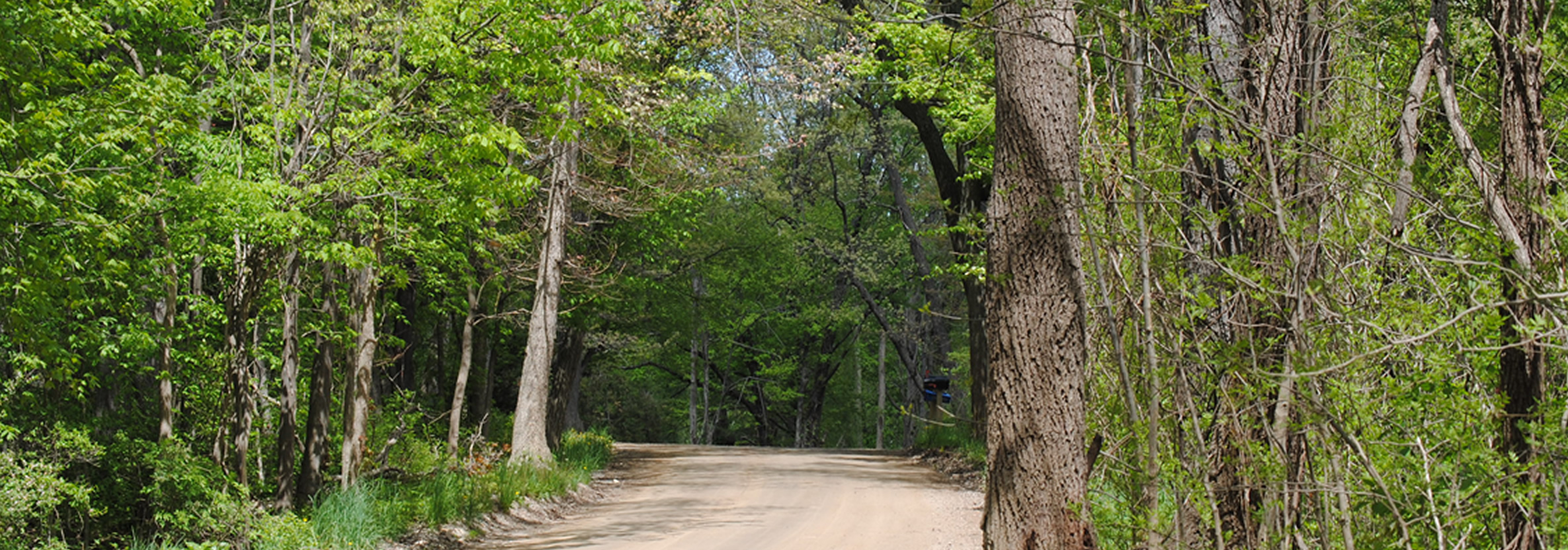 Highland Township Dirt Road.jpg